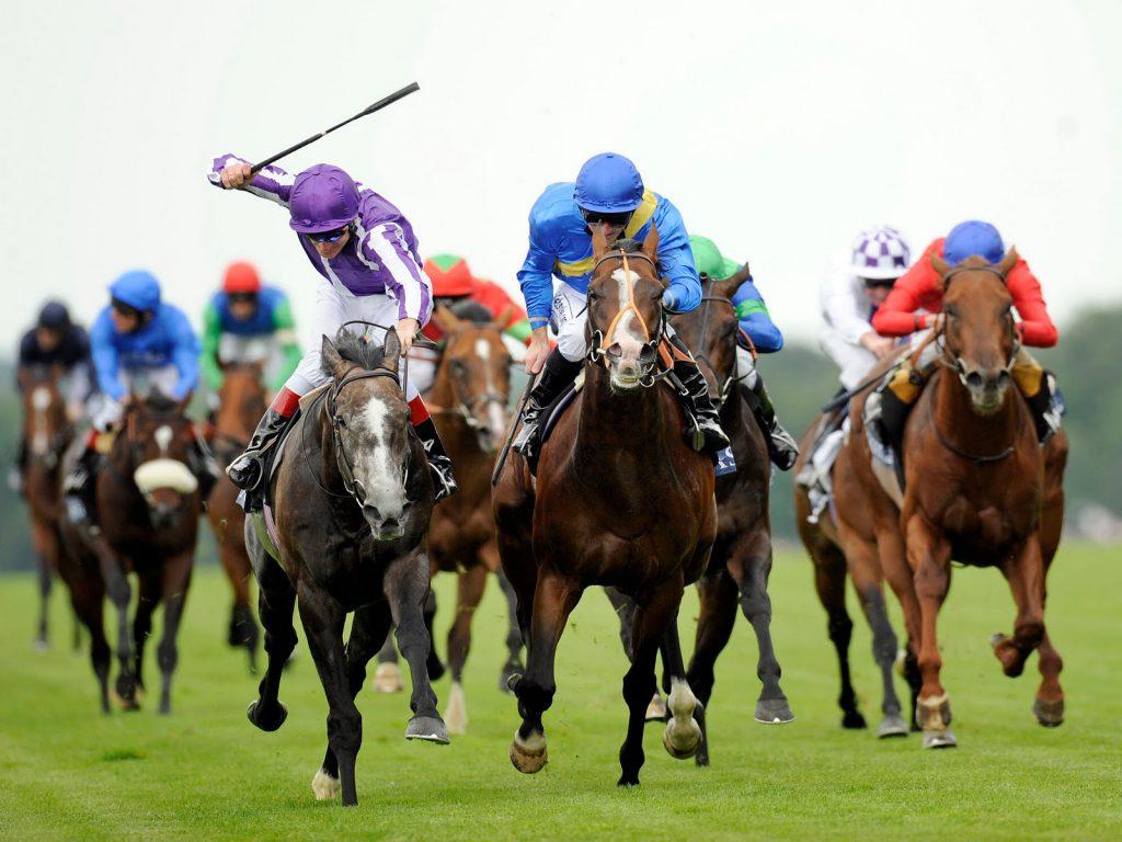 wonderful-horse-racing-high-definition-wallpaper-for-desktop-background-download-free