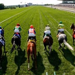 corridas-cavalos-apostas-online