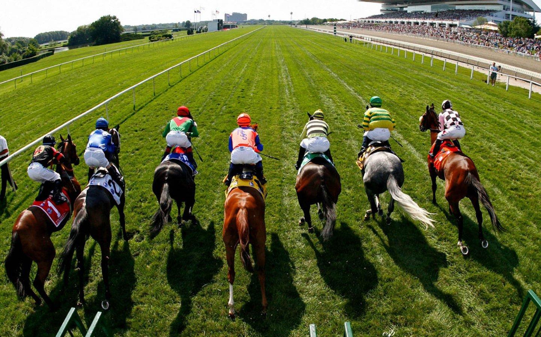 Apostas online cavalos